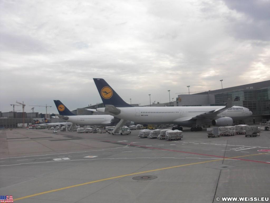 Zwischenstop in Frankfurt. Hier steigen wir um und setzen unsere Reise nach ca. 1 Stunde Wartezeit in einem größeren Flugzeug fort. In der zwischenzeit sehen wir uns am Flughafen etwas um.. - Flughafen, Flugzeug, Frankfurt, Lufthansa, Flugzeuge - (Frankfurt International Airport, Frankfurt am Main, Hessen, Deutschland)