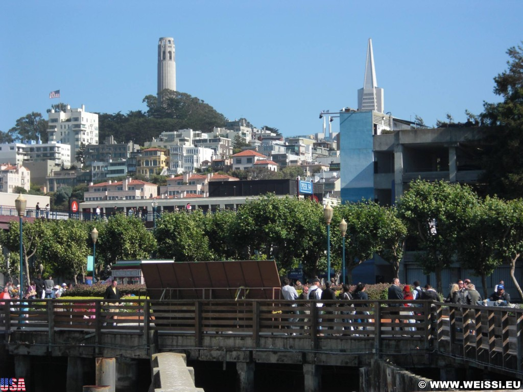 San Francisco. Coit Tower. - Westküste, Fishermans Wharf, Coit Tower, San Francisco - (Fisherman's Wharf, San Francisco, California, Vereinigte Staaten)