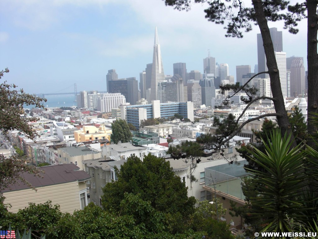 San Francisco. - Westküste, Transamerica Pyramid, Skyline, Oakland Bay Bridge, San Francisco - (Little Italy, San Francisco, California, Vereinigte Staaten)
