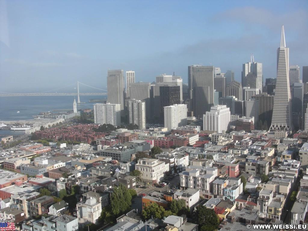 San Francisco. Ausblick vom Coit Tower. - Westküste, Transamerica Pyramid, Brücke, Skyline, Oakland Bay Bridge, Ausblick, Wolkenkratzer, San Francisco - (Little Italy, San Francisco, California, Vereinigte Staaten)