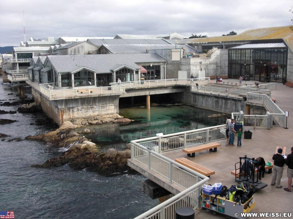 Monterey. - Westküste, Bay Aquarium, Amphietheater, Great tide Pool, Monterey - (New Monterey, Monterey, California, Vereinigte Staaten)