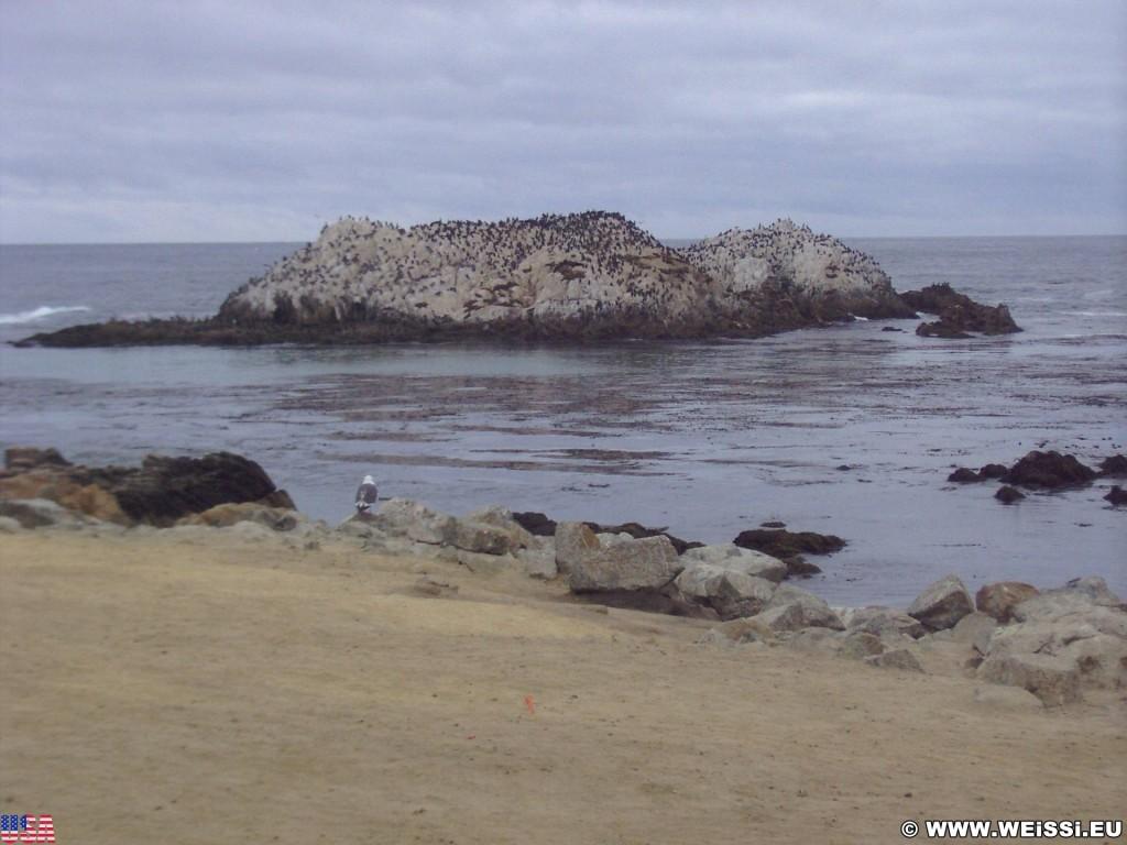 17-Mile Drive. - Westküste, 17-Mile Drive, Del Monte Forest, Bird Rock, Monterey