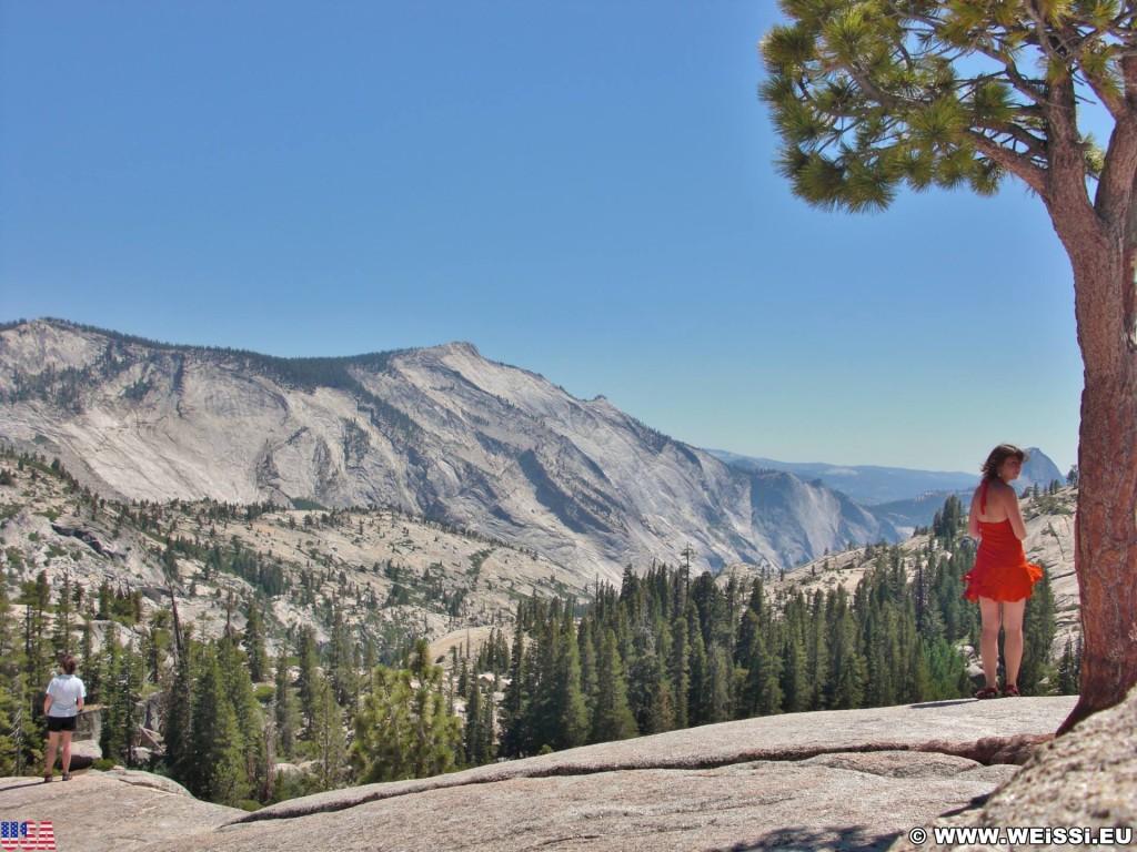 Yosemite National Park. - Yosemite Nationalpark, Aussichtspunkt, Tioga Pass, Olmsted Point - (Curry Village, Yosemite National Park, California, Vereinigte Staaten)