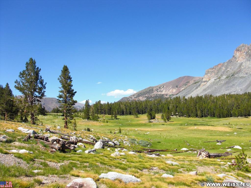Yosemite National Park. - Landschaft, Panorama, Yosemite Nationalpark, Aussichtspunkt, Tioga Pass, Dana Meadows - (Lee Vining, Yosemite National Park, California, Vereinigte Staaten)