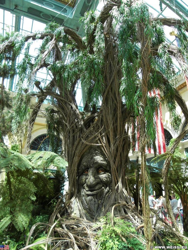 Las Vegas. - Bäume, Las Vegas, Hotel Bellagio, Winter Garden, Natur, Wintergarten, Botanischer Garten, Pflanzen, Blumen, Gesicht - (Bracken, Las Vegas, Nevada, Vereinigte Staaten)