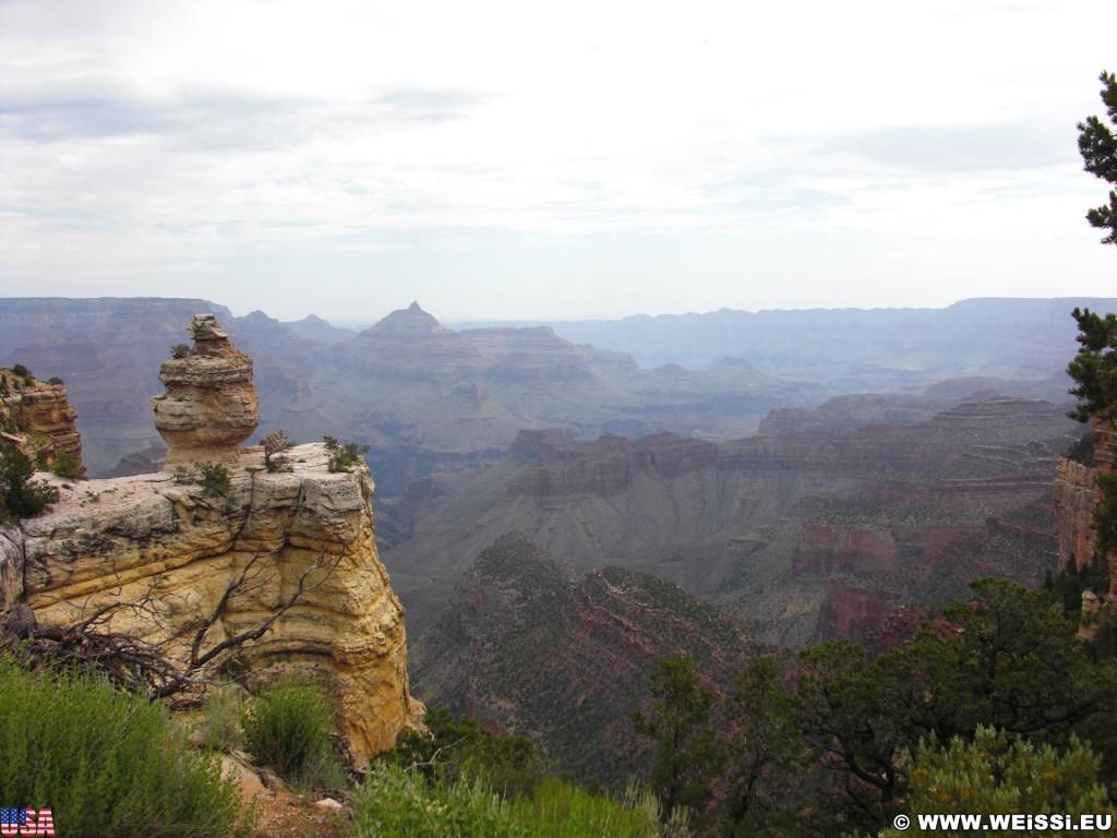 Grand Canyon National Park. Duck on a Rock - Grand Canyon National Park. - East Rim, Grand Canyon, National Park, East Rim Drive, Duck on a Rock - (Tusayan, Grand Canyon, Arizona, Vereinigte Staaten)