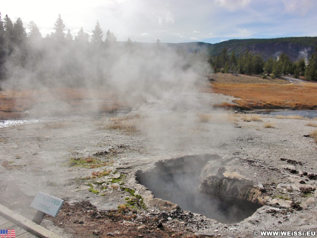 Yellowstone-Nationalpark. Scalloped Spring in der Old Faithful Area - Upper Geyser Basin South Section. - Old Faithful Area, Upper Geyser Basin South Section, Scalloped Spring - (Three River Junction, Yellowstone National Park, Wyoming, Vereinigte Staaten)