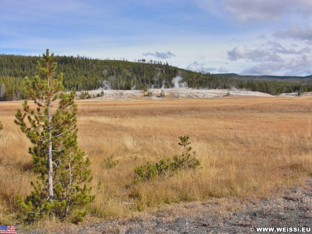 Yellowstone-Nationalpark. Geyser Hill vom Radweg in der Old Faithful Area - Upper Geyser Basin South Section. - Old Faithful Area, Upper Geyser Basin South Section, Geyser Hill - (Three River Junction, Yellowstone National Park, Wyoming, Vereinigte Staaten)