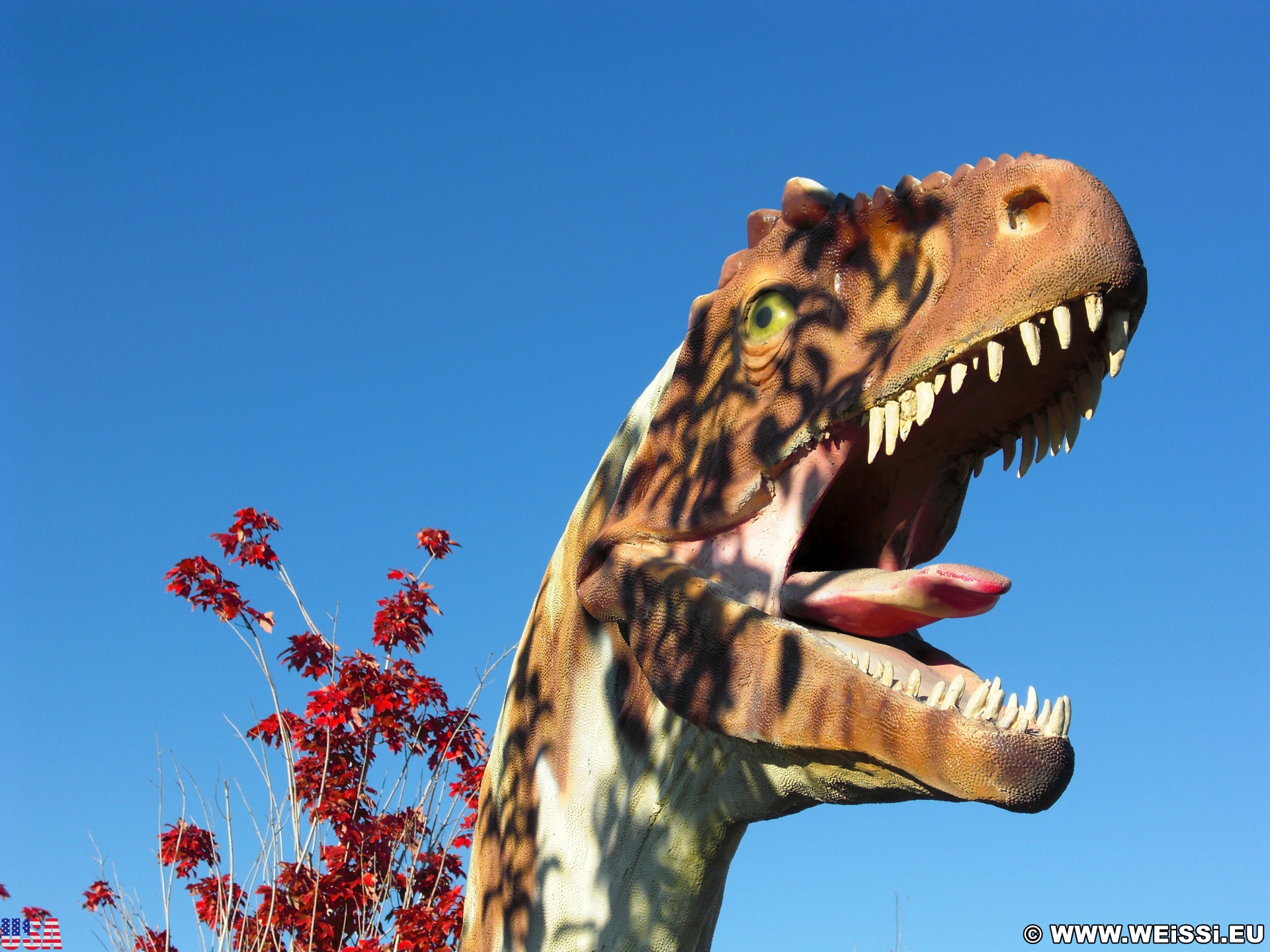 15. Tag, Dinoland - Dinosaur National Monument