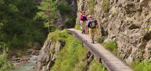 Ötschergräben - Der Grand Canyon Niederösterreichs. Bergauf der zauberhaften Landschaft und dem Ötscherbach folgend, vorbei an zahlreichen Kaskaden und Felsgebilden, erreicht man nach ca. 1,5 Stunden (4,8km) die Jausenstation Ötscherhias.. - Wasser, Bach, Ötschergräben, Vordere Ötschergräben, Ötscherbach - (Hagen, Mitterbach-Seerotte, Niederösterreich, Österreich)